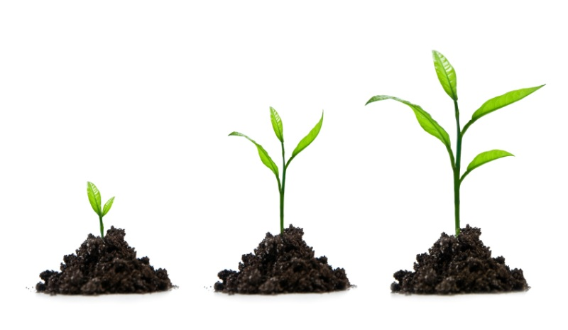Small-Business-Growth-Stages